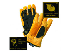 Guanti Gold Leaf Winter Touch - Uomo -